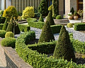 Ornamental garden with clipped hedging plants