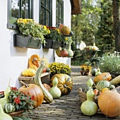 House wall decorated with autumn flowers, squashes and pumpkins