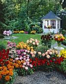 Garden with summer house and mixed dahlias