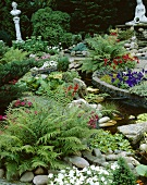 Garden with pond, foliage plants and summer flowers