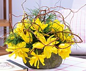Arrangement of yellow tulips, asparagus fern, corkscrew willow