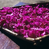 Purple flowers in a small basket