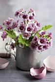 A bunch of lilac primroses in a zinc jug