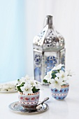 Oriental lantern with white flowers in egg cups