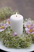 Kranz aus Clematisfruchtständen mit Kerze und Anemonen