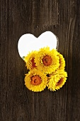 Heart-shaped hole in wood with strawflowers