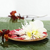 White dahlia and orchid on wooden plate