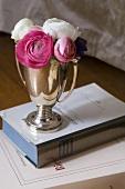 Ranunculus in a silver cup