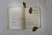 Music book with autumn leaves