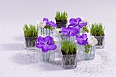 Table decoration of purple and white flowers and grass