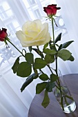 A cream-coloured rose and two red roses (table decoration)