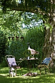 Garden furniture and dog in castle grounds (La Verrerie, France)