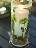Windlight on a garden table