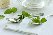 Silver spoons with peppermint leaves (table decoration)