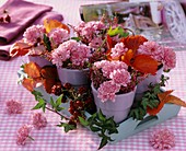 Chrysanthemums, heather and blackberries in small pots