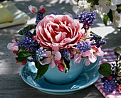 Tulip, grape hyacinths & apple blossom in a cup and saucer