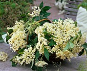 Basket of elderflowers