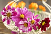 Various flowers in a wire basket