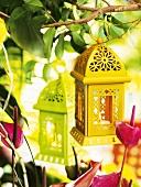 Coloured lanterns (garden decorations)