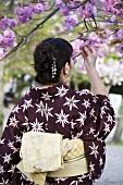 Woman in brown kimono smelling cherry blossom