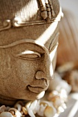 Buddha head and chain of shells
