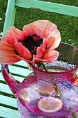 Eine Monblume im Wasserkrug