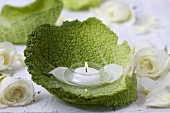 Tealight in savoy cabbage leaf