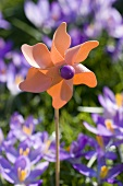 Toy windmill with crocuses