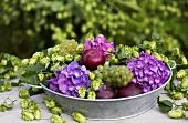 Arrangement of hops, hydrangeas, grapes and plums