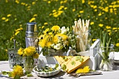 Asparagus and spring onions on table in field of dandelions