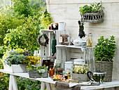 Arbeitstisch am Gartenhaus mit verschiedenen Kräutern