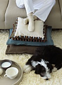 Dog lying on rug and person sitting on sofa with feet on scatter cushions