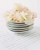 Stacked plates with cream flowers