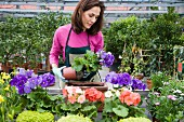 Gardner repotting plants