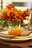 Gourd on Place Setting on Thanksgiving Table