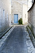 Stone Alleyway in French Countryside