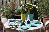 White tulips in vases and turquoise crockery on a table