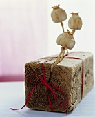 Poppy seed heads stuck in a block of wood with a red ribbon wrapped around it