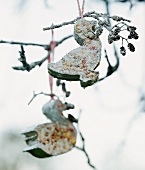 Frost-covered bird food hanging in a tree