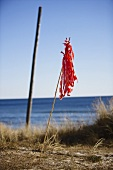 Strips of red fabric on a stick stuck in the sand with the sea in the background