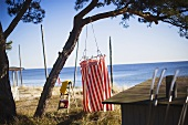 A sandy beach with a view of the sea and a red and white striped changing cabin hanging from a tree