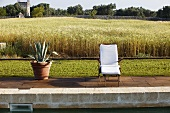 Agave in a pot and a lounge chair with a cushion, poolside with a view of a field of grain