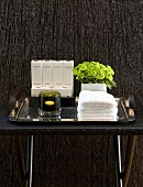 Side table with spa products in front of a wall with wood paneling stained black