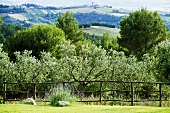 View over a garden fence of a typical hilly Italian landscape