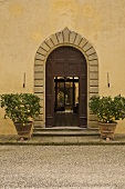 Elegant entry with stone archway and lemon trees in planters