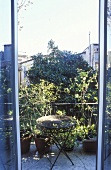 View through an open terrace door of a side table and plant pots