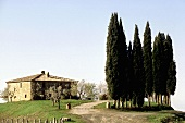 Mediterranean landscape with cypresses and a country home with a natural stone facade