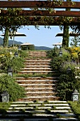 Flight of stairs and a pergola in a terrace garden with a view of a sun umbrella