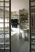 View though and opening between two glass brick walls into a bathroom at a vanity with shelves