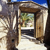 An open wooden door with a view on a Mediterranean courtyard with palm trees